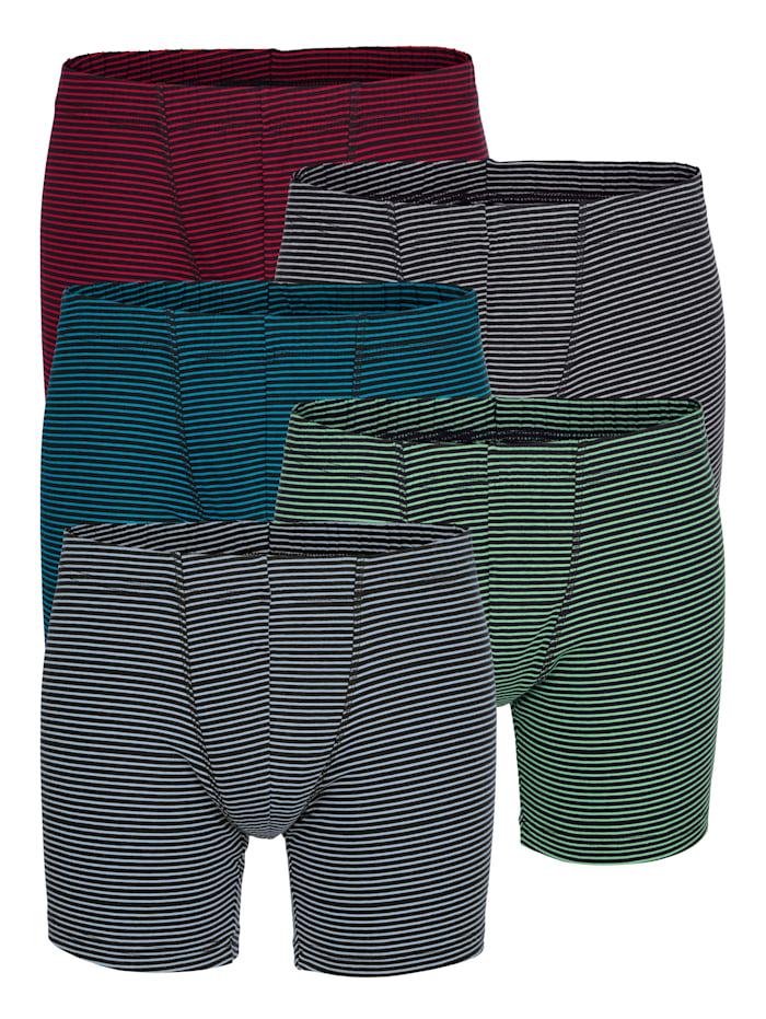 G Gregory Boxerkalsonger med långa ben - smalrandiga, Mörkgrön/Röd/Turkos/Grå/Antracitgrå