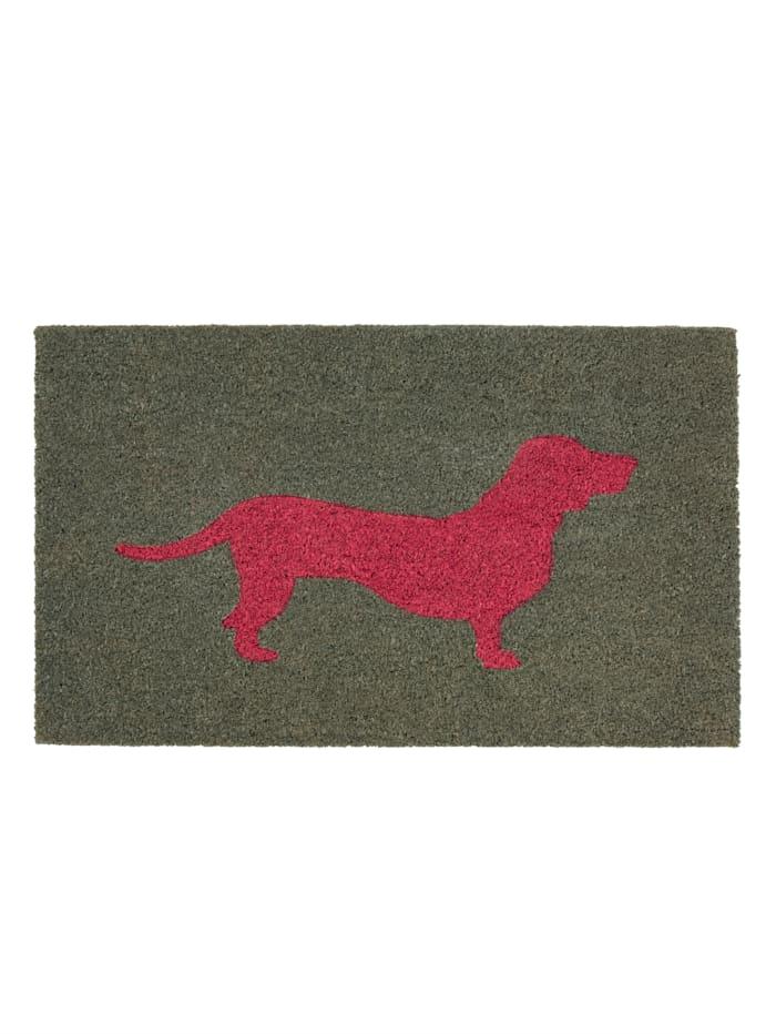 IMPRESSIONEN living Fußmatte, Hund, Bunt
