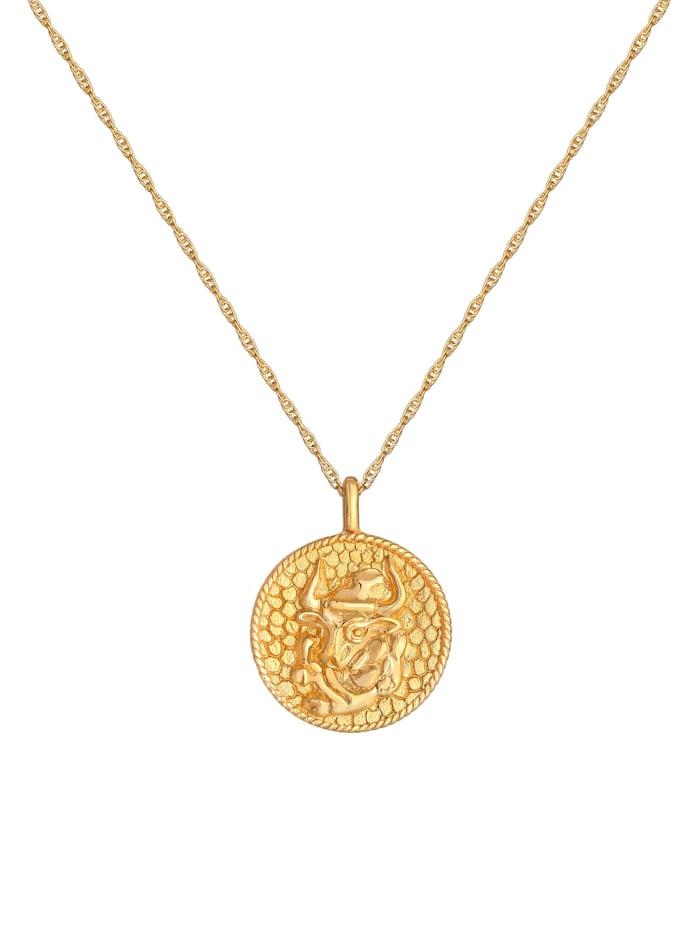 Halskette Sternzeichen Stier Astro Münze 925 Silber