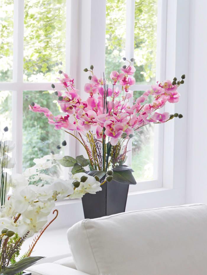 IGEA Orchidee im Topf, Rosé