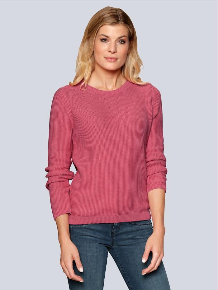 BRAX Pullover in frischer Farbstellung, Pink