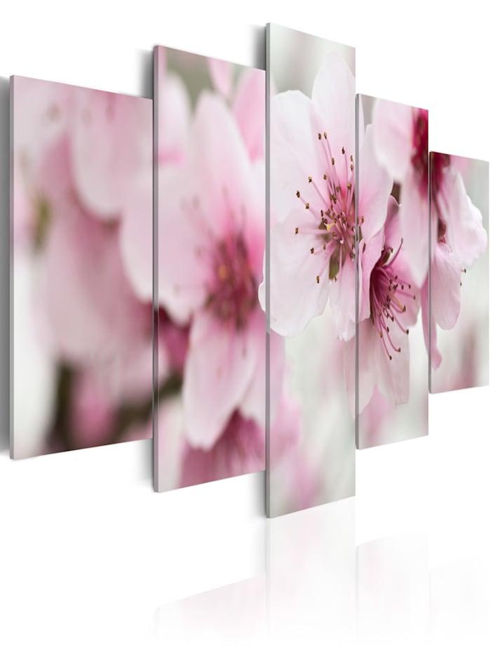 artgeist Wandbild Kirschblüte - freundlich und sanft, Grau,rosa,Violett,Weiß