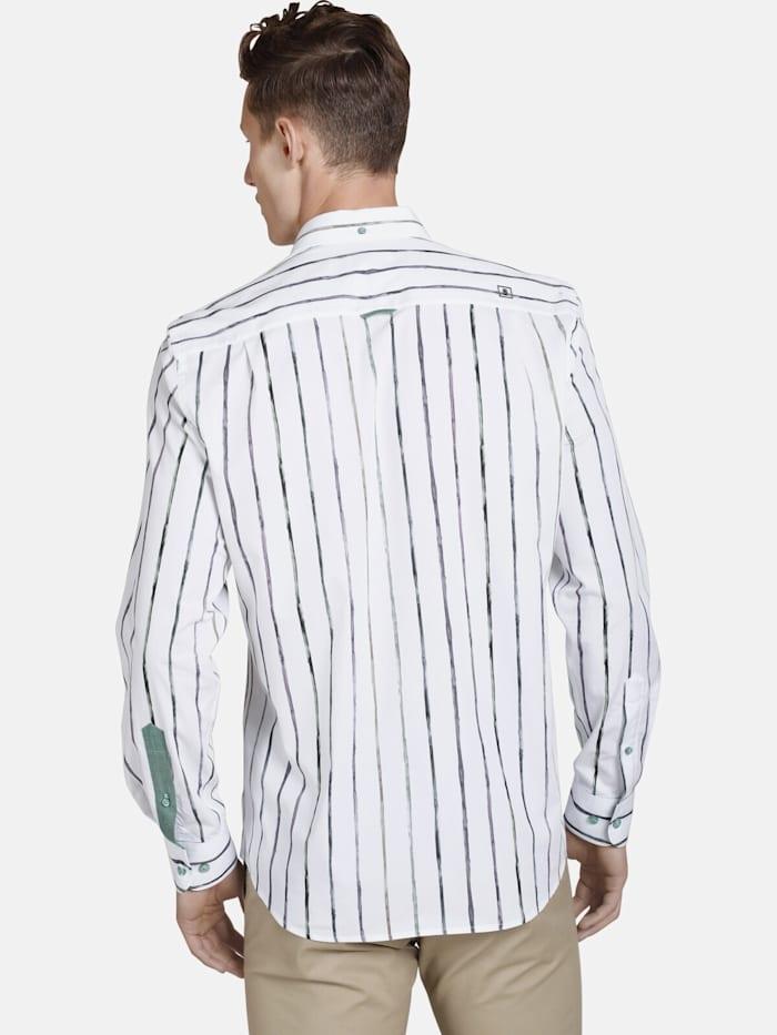 Shirtmaster Hemd thepainter