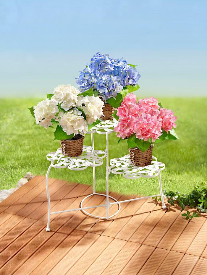 Pflanzentreppe 'Fleur'