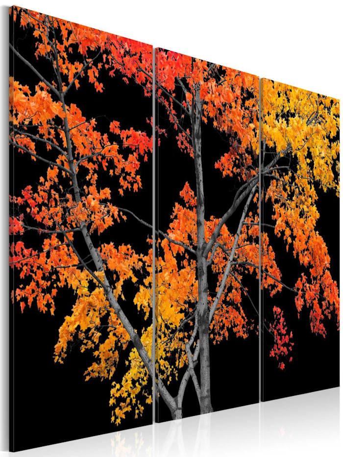artgeist Wandbild Autumn reflection, Orange,Rot,Gelb,Schwarz,Kupfer