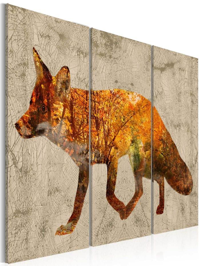 artgeist Wandbild Fox in The Wood, Braun,Grün,Grau,Orange,Weiß