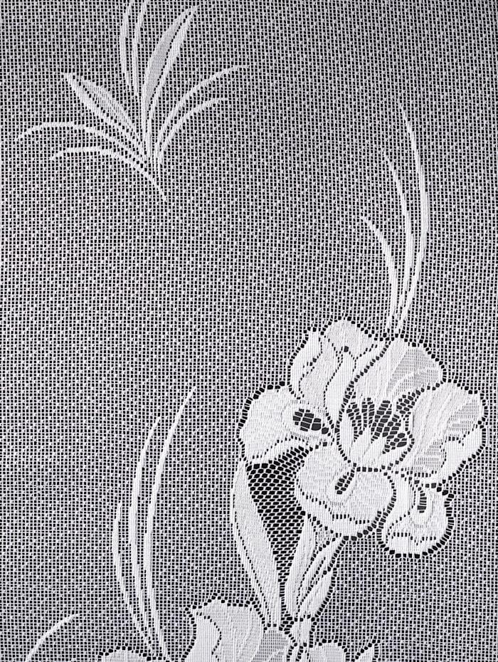 Vitrage Iris