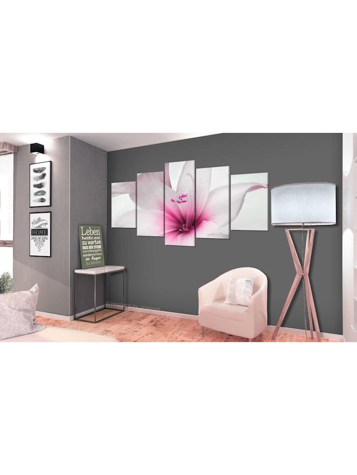 Wandbild Amarylis: Pink Charm