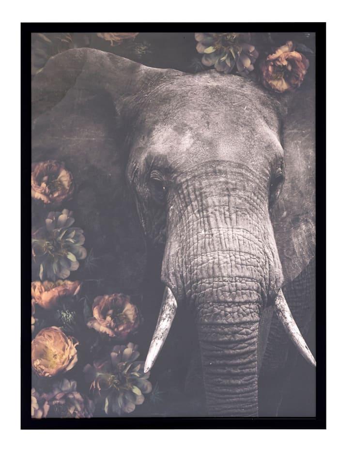 IMPRESSIONEN living Bild, Elefant, grau