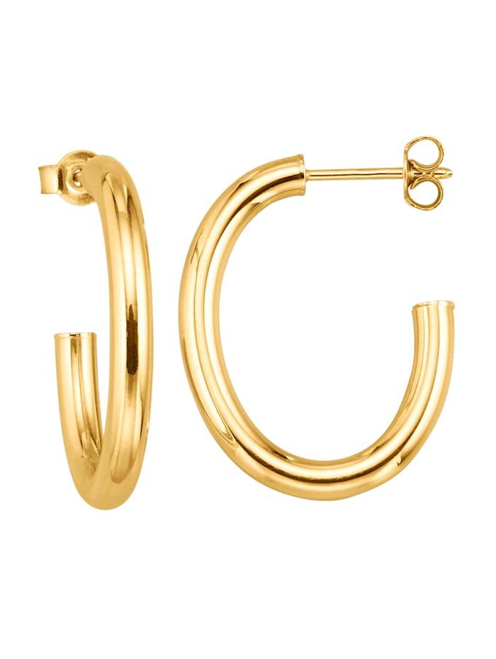 Diemer Gold Creoler med stift och snurrebuss, Guldfärgad