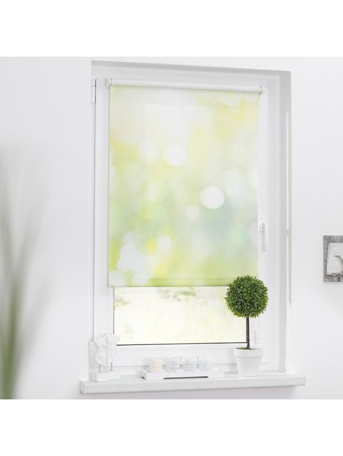 Lichtblick Sonnenschutzsysteme Rollo Klemmfix, ohne Bohren, blickdicht, Lichtspiel - Grün Gelb, Grün Gelb