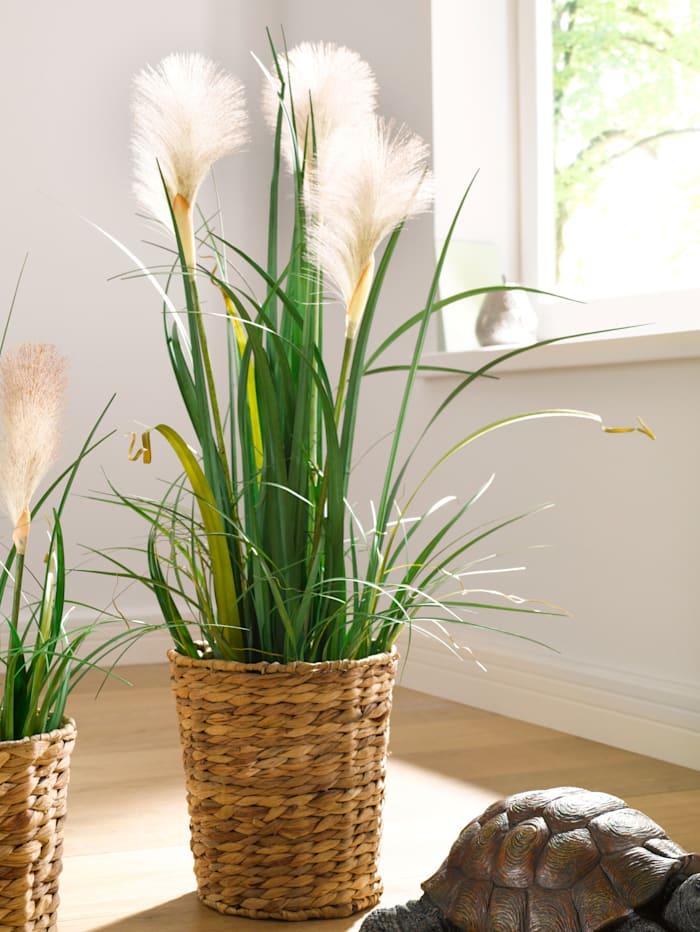 Konstgjord växt, pampasgräs, grön