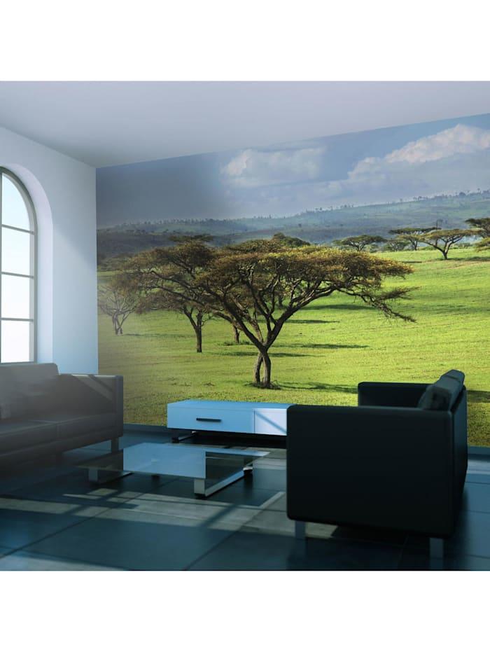 artgeist Fototapete Afrikanische Bäume, Grün,Himmelblau