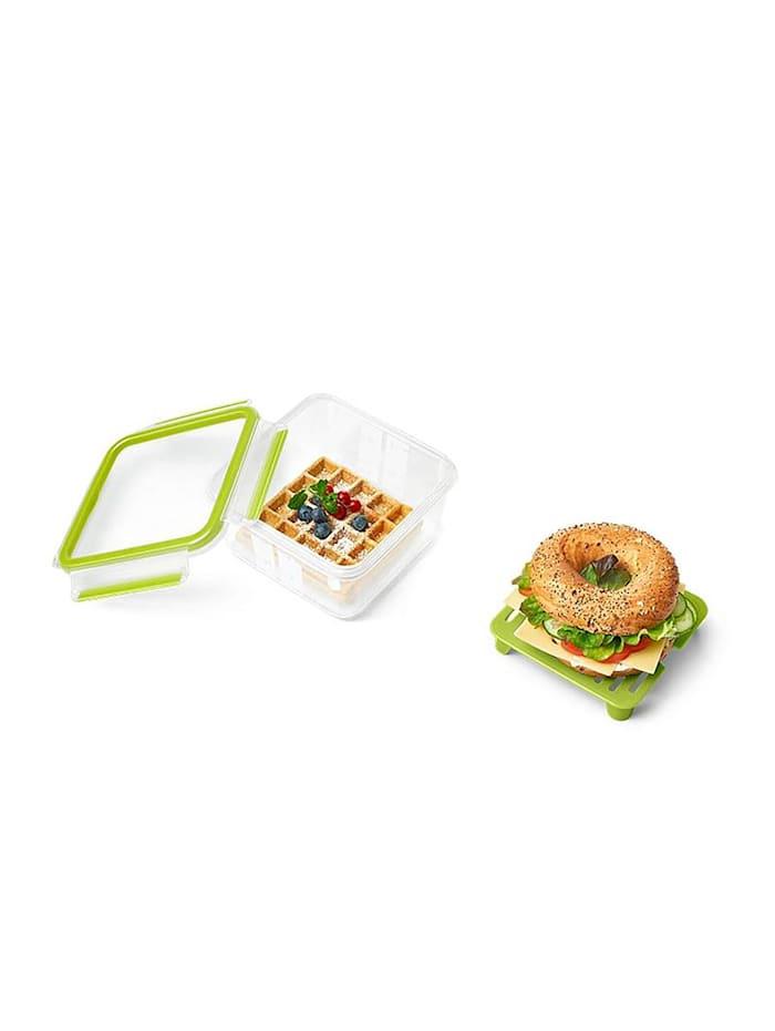EMSA Sandwichbox XL mit Einsatz Clip   Go, Transparent, Grün