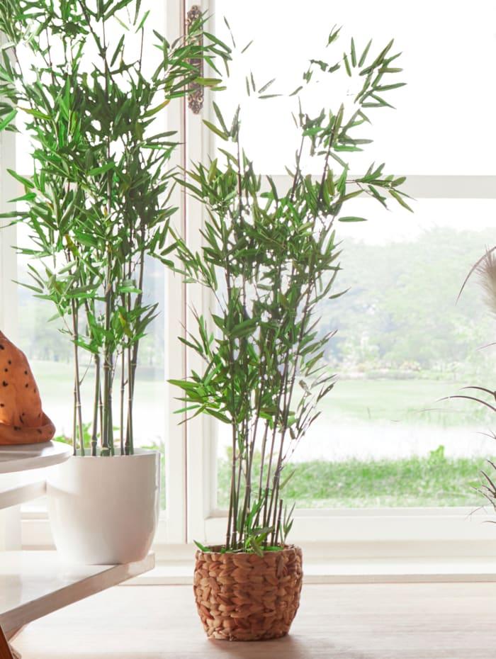 Kunstblume 'Bambus'