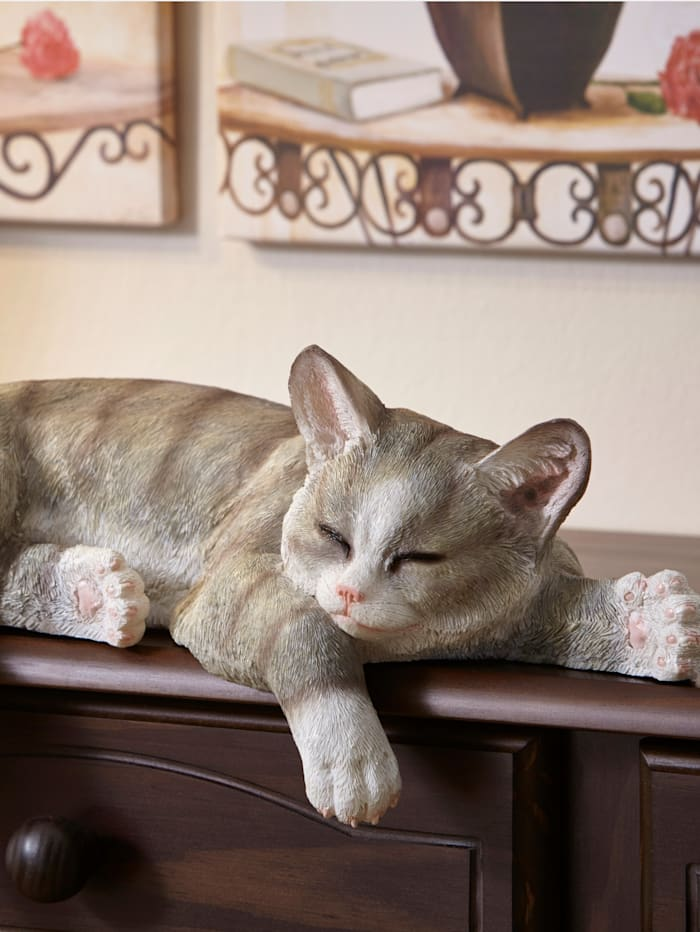 Kantenhocker Katze, Grau