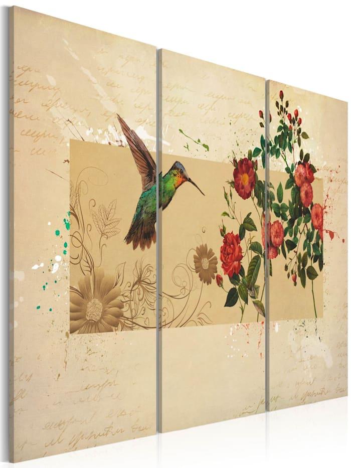 artgeist Wandbild Kolibri und Rosen, beige,green,red