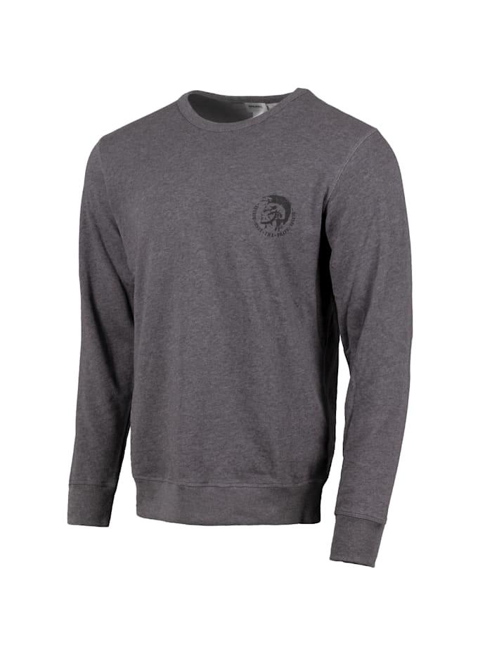 Diesel Sweatshirt UMLT-WILLY, grau