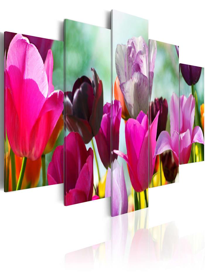 artgeist Wandbild Pink & Co., Violett,rosa