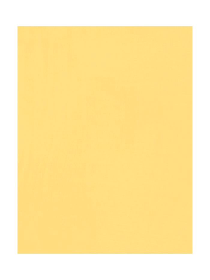 Schal im einfarbigen Design mit Fransen