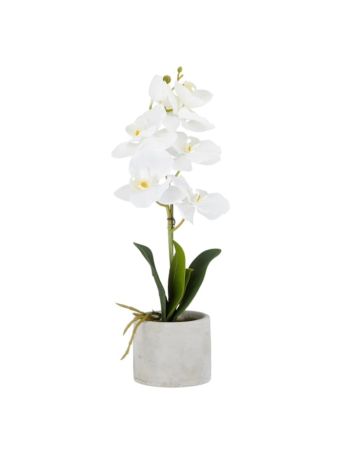 HTI-Living Kunstblume Orchidee im Topf, Weiß