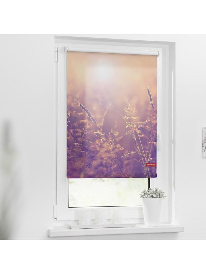 Lichtblick Sonnenschutzsysteme Rollo Klemmfix, ohne Bohren, blickdicht, Sommerabend - Orange, Orange
