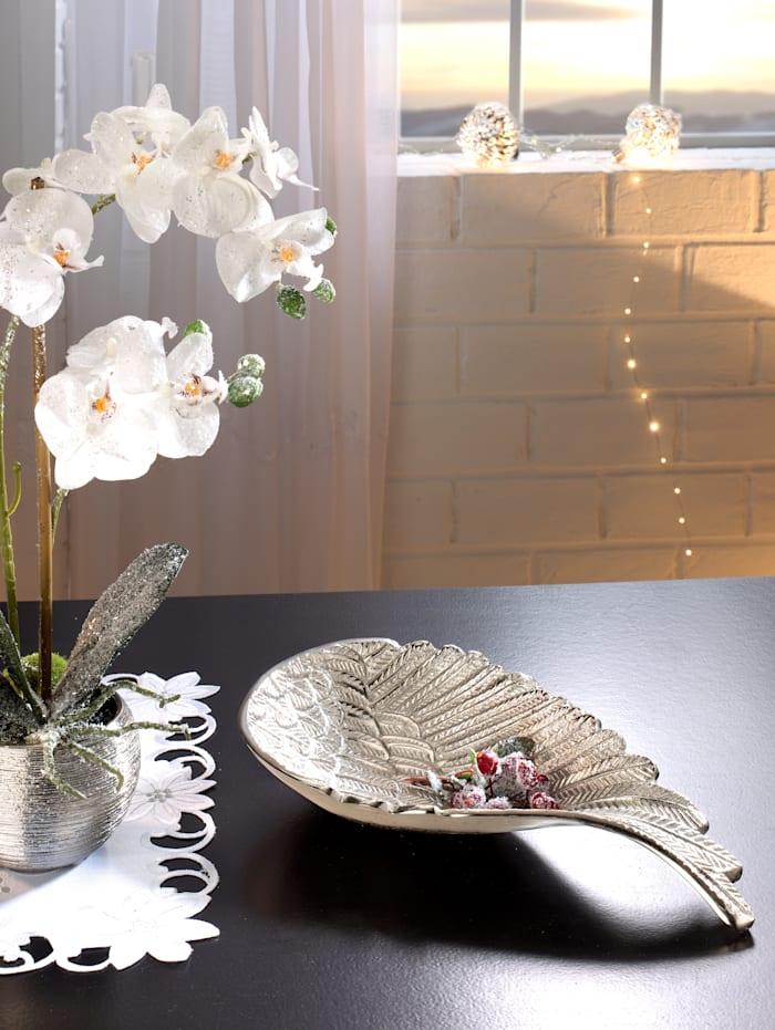 Coupelle décorative aile d'ange
