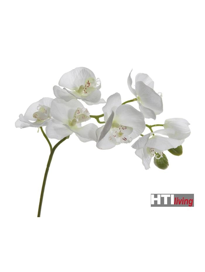 Orchideenzweig Kunst 9 Blüten