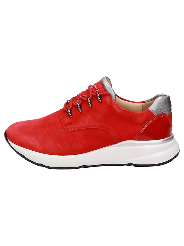 Sneaker Segolia-700-J