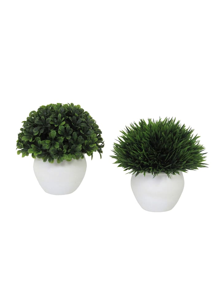2-teiliges Set Mini-Gras